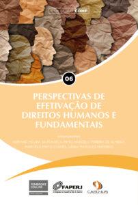 06-CDHF-capa-Perspectivas-de-efetivacao-de-direitos-humanos-e-fundamentais-202x300