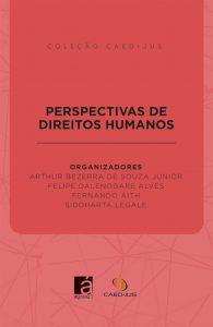 capa-perspectivas-de-direitos-humanos-195x300