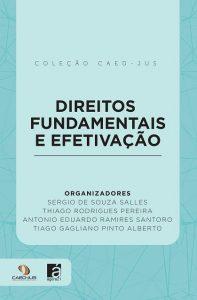 capa_-_direitos_fundamentais_e_efetivação_-_090317-site-197x300