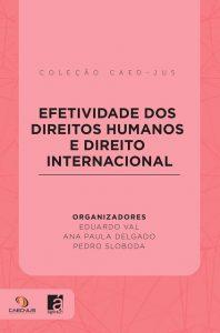 capa_-_efetividade_dos_direitos_humanos_-_090317-198x300